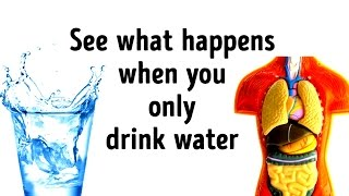 Download What Would Happen If You Replace All Drinks with Water? Video