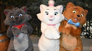 Download Disney Loves Jazz Character Montage Including Aristocats, Edgar, Oswald, Ortensia+, Disneyland Paris Video