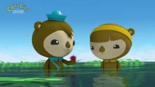 Download Octonauts Season 3 The Urchin Invasion Video