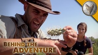 Download Gila Monster - Behind the Adventure Video