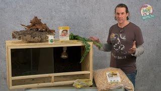 Download Reptil TV - Folge 75 - DIY Reptilien Holz Terrarium Video