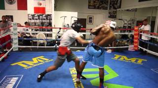 Download #2 ranked amateur Tim Lee sparring @ Mayweather Boxing Club Video