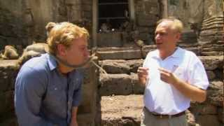 Download WFFT at Lopburi with Bondi Vet Video