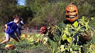Download Pumpkin Patch Killer Halloween Scare Prank Video