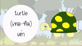 Download คำศัพท์สัตว์ภาษาอังกฤษ ″Vocabulary Animal″ Video
