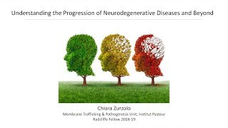 Download Understanding the Progression of Neurodegenerative Diseases | Chiara Zurzolo || Radcliffe Institute Video