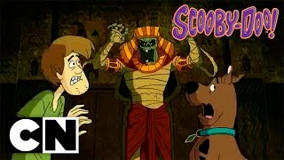 Download Scooby-Doo! in Where's My Mummy? (Preview) Video