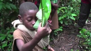 Download Topé Malangui Bodé from the album, ″Kopolo″ by Orchéstre Baka Gbiné Video