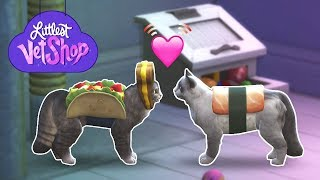 Download It's Mating Season! | Littlest Vet Shop - Ep4 - Sims4 Cats & Dogs Video