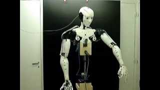 Download 3D Printed Humanoid Robot - InMoov Open Source Video