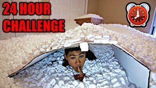 Download OVERNIGHT IN 1,000,000 PACKING PEANUTS | 24 Hour Challenge Video