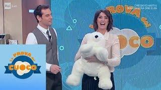 Download Un ammiratore segreto regala fiori e un orso bianco a Elisa Isoardi - La prova del cuoco 14/02/2019 Video