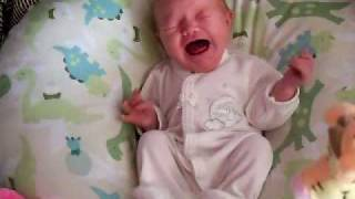 Download ryleigh crying Video
