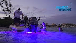 Download Florida Sportsman Project Dreamboat - Boston Whaler Reveal, Season Two Recap Video