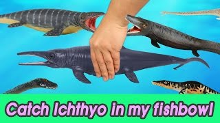 Download [EN] #47 Let's catch Ichthyosaurus in my fishbowl 2 kids education, Collecta figureㅣCoCosToy Video