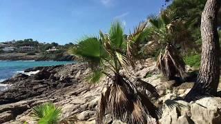 Download Majorque 2017 - Font de Sa Cala Video