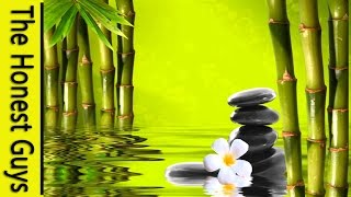 Download 12 HOURS Relaxing Music with Water Sounds Meditation Video