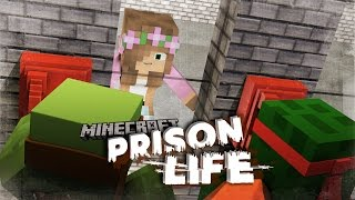Download Minecraft Prison Life - TINY TURTLE COMMITS MURDER?! #9 Video