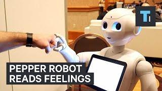 Download Pepper Robot reads feelings Video