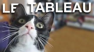 Download LE TABLEAU - PAROLE DE CHAT Video