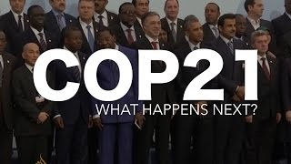 Download COP21 Agreement: Explained Video