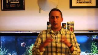 Download NorthFin vs NLS opinion Video