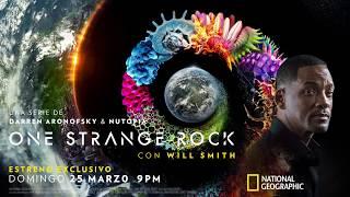 Download Te invitamos al ejercicio de Neuromarketing con One Strange Rock Video