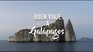 Download Buen Viaje a Galápagos - Maravillosa Naturaleza Video