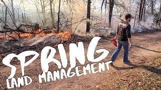 Download Improve Deer Habitat - Spring Land Management S8 #70 Video
