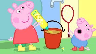 Download Peppa Pig Official Channel | Peppa Pig and George Pig Play With Bubbles Video
