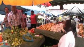 Download French Guiana - magnet for immigrants Video