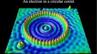 Download Why fluid dynamics mimics Quantum Mechanics Video