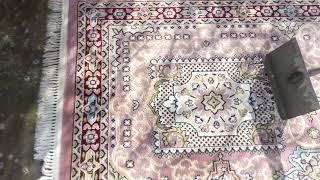 Download oddly satisfying carpet washing Video