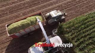 Download Usługowy zbiór kukurydzy Claas Jaguar 950 - Piotr Kalińśki tel. 692 240 240 Video