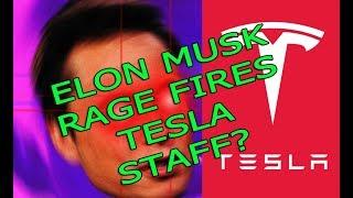 Download Did Elon Musk just rage fire Tesla staff?? Video