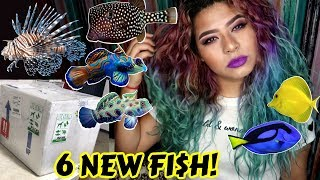 Download UNBOXING THE MOST EXPENSIVE RARE FISH IVE EVER OWNED! (SALTWATER) Video