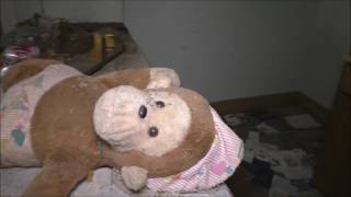 Download ABANDONED HOUSE - GIANT baby monkey left to die. Video