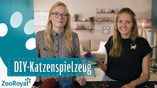 Download Katzenspielzeug DIY | Rund um die Katz mit Katzenbloggerin Ani | ZooRoyal Video