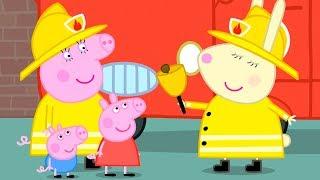 Download Peppa Pig en Español Episodios completos   Peppa Mejores vehículos   Pepa la cerdita Video