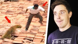 Download GUESS THE UNEXPECTED TWIST CHALLENGE! Video