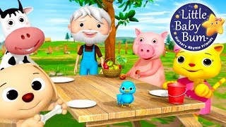 Download Nursery Rhyme Videos! | Food Songs! | Compilation from LittleBabyBum! | Live Stream! Video