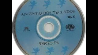 Download Anginho Dos Teclados - Seresta Vol. 13 (álbum completo) Video