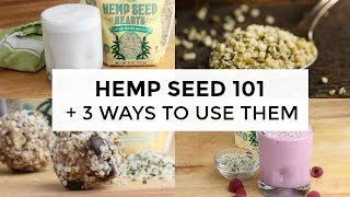 Download Hemp Seed 101 | Everything You Need To Know Video