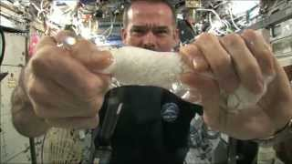 Download Wringing out a Water Soaked Washcloth in Space | CSA Science HD Video Video