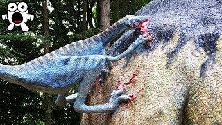 Download Dinasaurios Tan Letales Que Derrotarían Al T-Rex Video