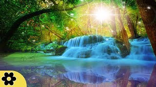 Download Healing Meditation Music, Relaxing Music, Music for Stress Relief, Background Music, ✿3230C Video