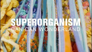 Download Superorganism (MicroShow for The Current) Video