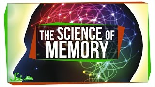 Download 5 Videos on the Science of Memory Video