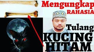 Download Rahasia TULANG KUCING HITAM Membuat TIDAK TERLIHAT Video