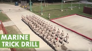 Download Platoon of Marines perform trick drill Video